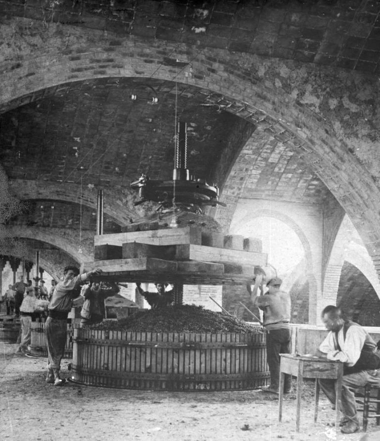 sala de premses a les Caves Codorniu